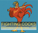 Fighting Cocks