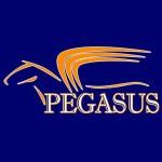 pegasus_sq